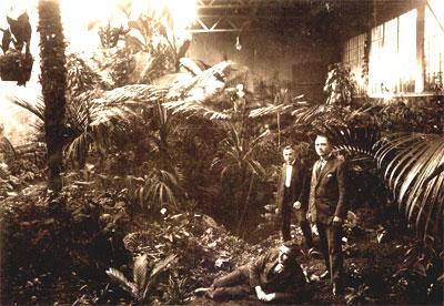 Mitglieder der Familie im Palmenhaus